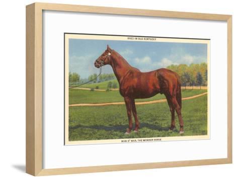 Man O'War, Kentucky Thoroughbred--Framed Art Print