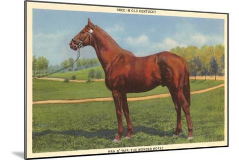 Man O'War, Kentucky Thoroughbred--Mounted Art Print