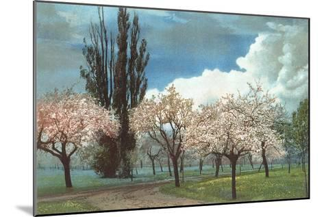 Peach Blossoms, Country Lane--Mounted Art Print