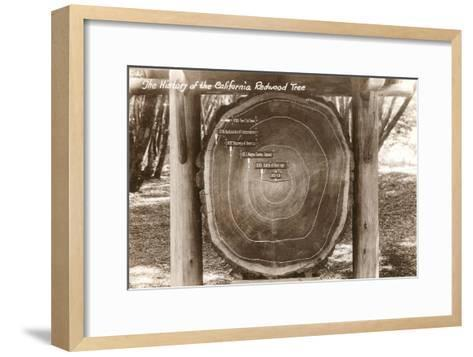 Redwood Section with Dates--Framed Art Print