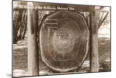 Redwood Section with Dates--Mounted Art Print