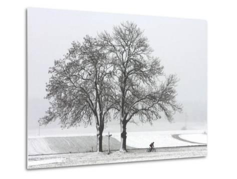 Cyclist Passes a Tree Covered with Snow, Southern Germany--Metal Print
