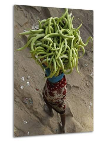 Indian Farmer Carries Cucumbers to Sell in the Market on the Outskirts of Allahabad, India--Metal Print