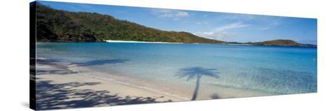 Shadow of Trees on Beach, Hawksnest Bay, Virgin Islands National Park, St. John, Us Virgin Islands--Stretched Canvas Print