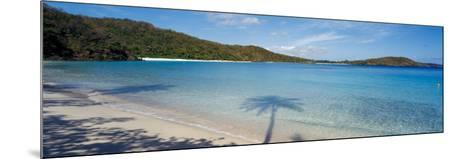Shadow of Trees on Beach, Hawksnest Bay, Virgin Islands National Park, St. John, Us Virgin Islands--Mounted Photographic Print
