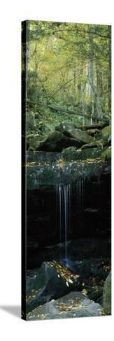 Waterfall in a Forest, Great Smoky Mountains National Park, North Carolina, USA--Stretched Canvas Print