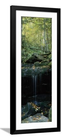 Waterfall in a Forest, Great Smoky Mountains National Park, North Carolina, USA--Framed Art Print