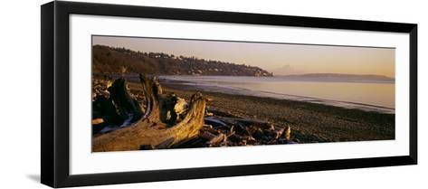 Driftwood on the Beach, Discovery Park, Mt Rainier, Seattle, King County, Washington State, USA--Framed Art Print