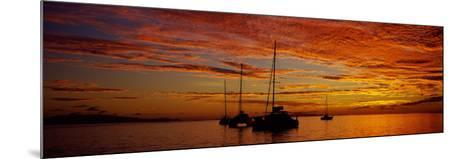 Sailboats in the Sea, Tahiti, French Polynesia--Mounted Photographic Print