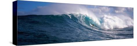 Surfer in the Sea, Maui, Hawaii, USA--Stretched Canvas Print