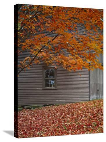 Barn and Maple Tree in Autumn, Vermont, USA-Scott T^ Smith-Stretched Canvas Print