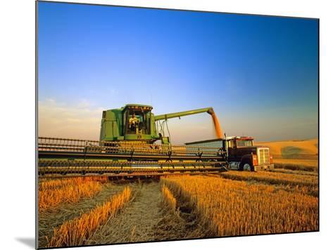 Farmer Unloading Wheat from Combine Near Colfax, Washington, USA-Chuck Haney-Mounted Photographic Print
