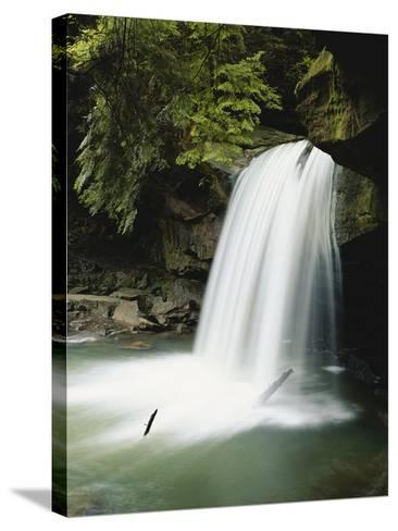 Dogslaughter Falls in Spring, Daniel Boone National Forest, Kentucky, USA-Adam Jones-Stretched Canvas Print