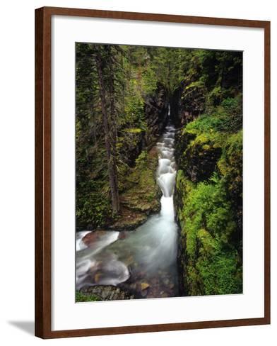 Sunrift Gorge on Baring Creek in Glacier National Park, Montana, USA-Chuck Haney-Framed Art Print
