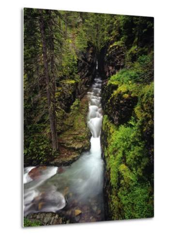Sunrift Gorge on Baring Creek in Glacier National Park, Montana, USA-Chuck Haney-Metal Print