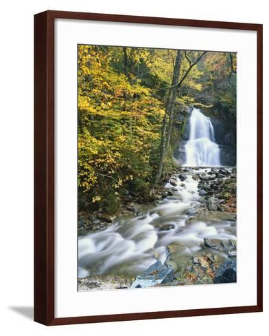 Moss Glen Falls in Autumn, Granvillie, Vermont, USA-Adam Jones-Framed Art Print