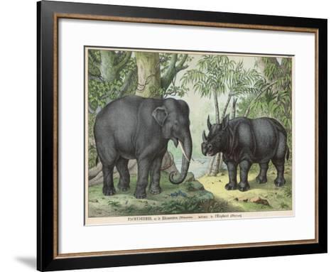 An Indian Elephant and a Rhinoceros--Framed Art Print