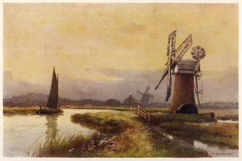 Broads - Drainage Mills--Stretched Canvas Print