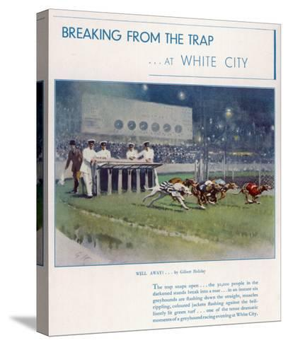 Greyhound Racing at White City--Stretched Canvas Print