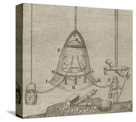 Halley's Bell--Stretched Canvas Print