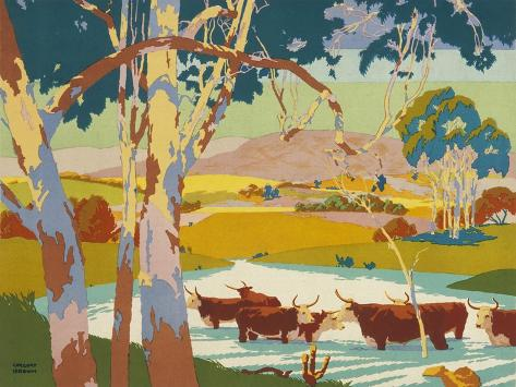 Poster for the Empire Marketing Board, Depicting Cattle Raising in Australia--Stretched Canvas Print