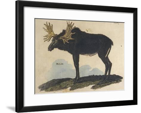 Moose Giclee Print by | Art.com