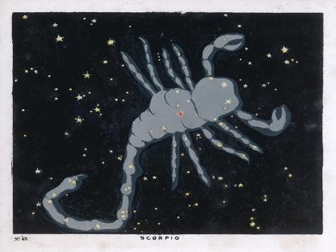 The Constellation of Scorpio, the Scorpion--Stretched Canvas Print