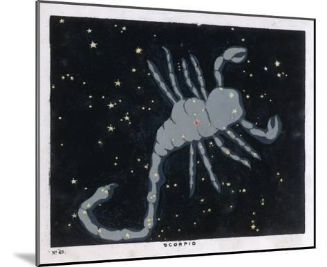 The Constellation of Scorpio, the Scorpion--Mounted Giclee Print