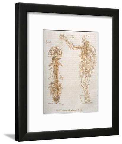 The Nervous System--Framed Art Print