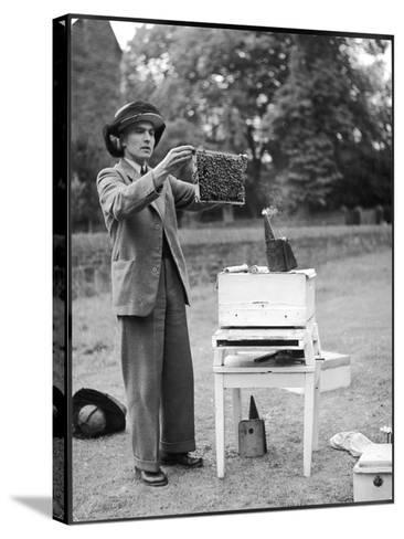 The Apiarist - a Bee Keeper Demonstrating the Examination of Frames of Brood--Stretched Canvas Print