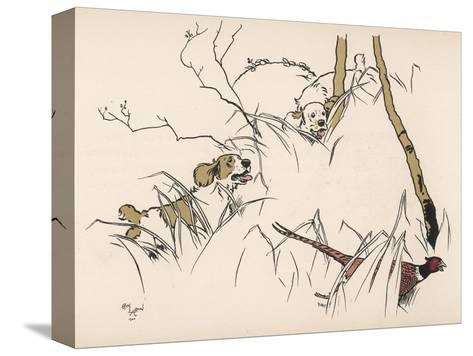 Two Spaniels Chase a Frightened Pheasant Through the Undergrowth--Stretched Canvas Print