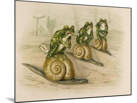 Three Frogs Mounted on Snails Race Each Other--Mounted Giclee Print