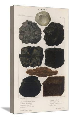 Various Types of Carbon Including Crystallised Diamond, Graphite, Slate Coal and Peat--Stretched Canvas Print
