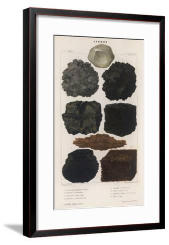 Various Types of Carbon Including Crystallised Diamond, Graphite, Slate Coal and Peat--Framed Art Print