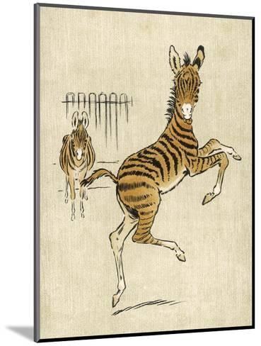 Zebra Mother and Young--Mounted Giclee Print