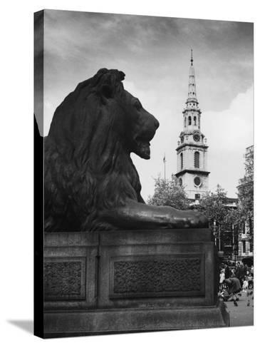 Landseer Lion--Stretched Canvas Print