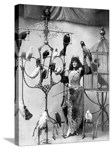 Madame Marzella with Her Pets, at the Tivoli, 1896--Stretched Canvas Print