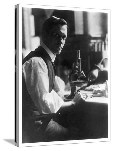 Sir Alexander Fleming - Scottish Bacteriologist at His Desk with His Microscope--Stretched Canvas Print