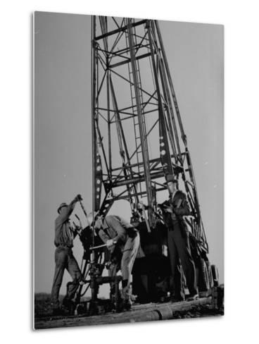 Phillips Petroleum Company Employees, Members of the Phillips 66 Champion Amateur Team, Working-Cornell Capa-Metal Print