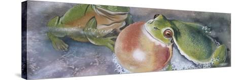 European Tree Frog (Hyla Arborea), Illustration--Stretched Canvas Print