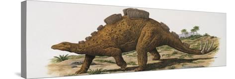 Wuerhosaurus Dinosaur Walking on a Landscape--Stretched Canvas Print