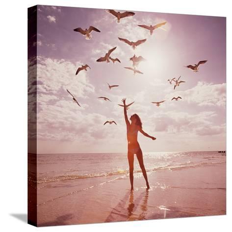 Woman Feeding Seagulls-Dennis Hallinan-Stretched Canvas Print