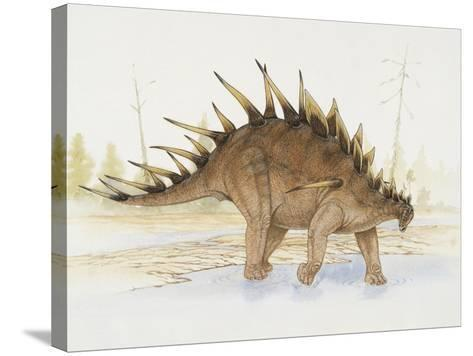 Kentrosaurus Dinosaur Standing in Water--Stretched Canvas Print