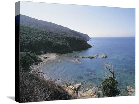 High Angle View of a Coastline, Populonia, Maremma, Tuscany, Italy--Stretched Canvas Print