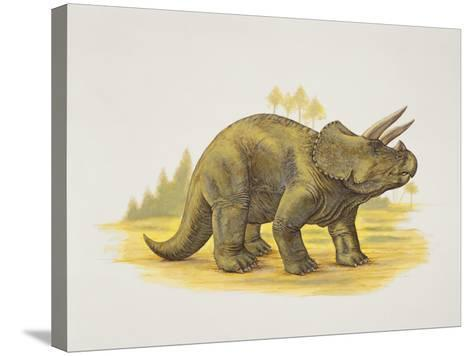 Side Profile of a Dinosaur--Stretched Canvas Print