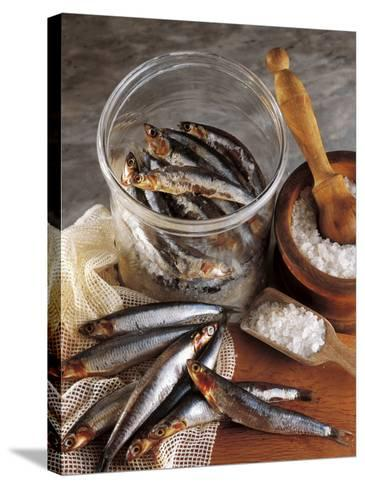 High Angle View of Anchovies in a Jar-P^ Martini-Stretched Canvas Print