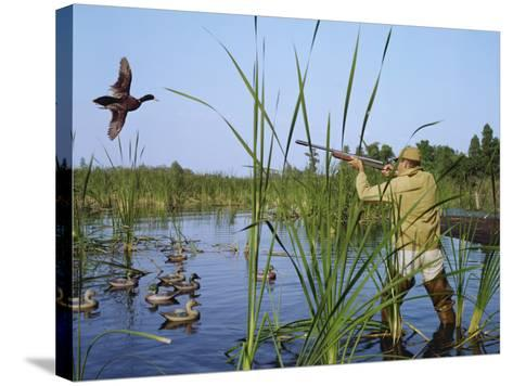 Hunter Aiming Rifle at Flying Duck-Dennis Hallinan-Stretched Canvas Print