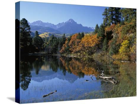 Colorful Autumn Forest in Front of Mount Sneffels Reflected in Water-Jeff Foott-Stretched Canvas Print