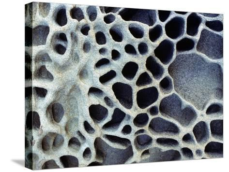 Close Up of Patterns in the Coastal Sand of Puget Sound, Washington, Usa-Jeff Foott-Stretched Canvas Print