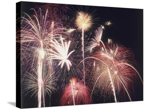 A View of Many Colorful Sparkling Fourth of July Fireworks Against the Nighttime Sky-Jeff Foott-Stretched Canvas Print